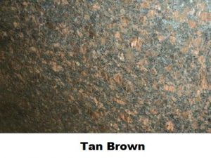 tan-brown-close-up-web